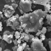 Dust Particles Magnified